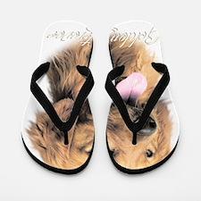 scriptgolden2 Flip Flops