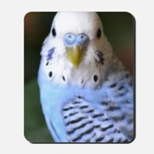 Budgies 013 Mousepad