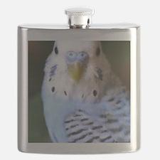 Budgies 013 Flask