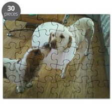 Get well soon cute Dog kissing sick puppy Puzzle