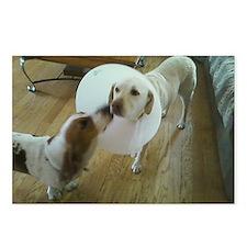 Get well soon cute Dog ki Postcards (Package of 8)