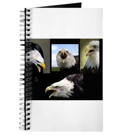 The Bald Eagle Journal