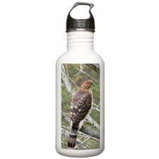 BW2.28x4.57SF Water Bottle