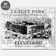 league park Framed Print Puzzle