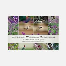 Jack London Hummingbird Calendar Rectangle Magnet