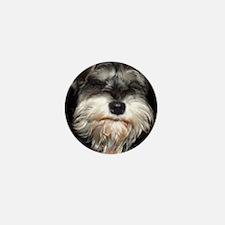salty dog Mini Button