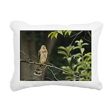 CoopersHawkJuvenile_Acci Rectangular Canvas Pillow