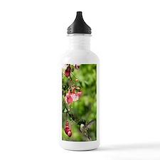 HB2.2x4.56 Water Bottle