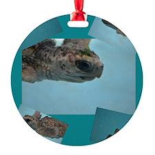 baby sea turtle Ornament