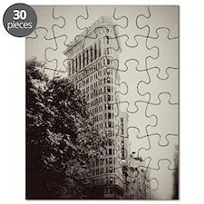 V Flatiron ipad sleeve Puzzle