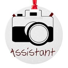 assistant Ornament