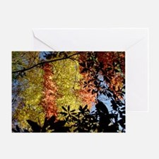 White water River Autumn Leaves Greeting Card