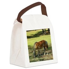 Doing Lunch Alone Canvas Lunch Bag