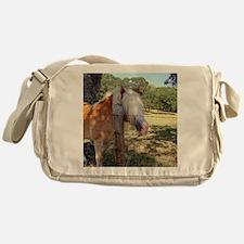 Like My New Bangs? Messenger Bag