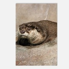 OtteriPad Case Postcards (Package of 8)
