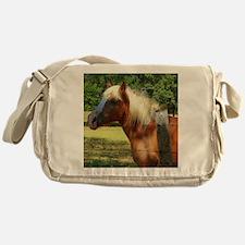 Friendly Soul Messenger Bag