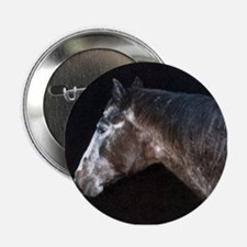 appaloosa Button