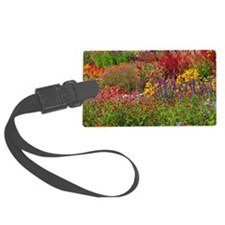 Picture 2137-1 Luggage Tag