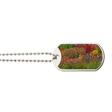 Picture 2137-1 Dog Tags