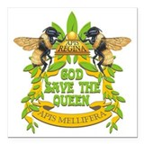 Honey bee Square Car Magnets