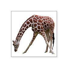 "giraffeCutOut Square Sticker 3"" x 3"""