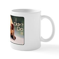 didntdoit3 Mug