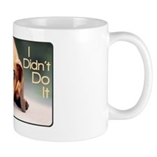didntdoit3 Small Mug