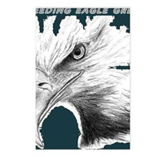 eagles1 - Copy Postcards (Package of 8)