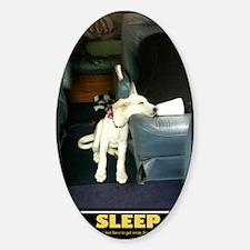 SleepPoster Decal