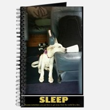 SleepPoster Journal
