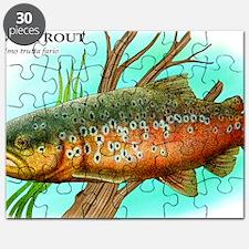 Brown Trout Puzzle