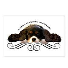 Cavalier Cute plain Postcards (Package of 8)