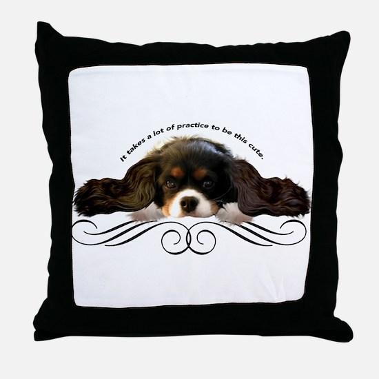 Cavalier Cute plain Throw Pillow