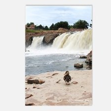 duck_journal Postcards (Package of 8)