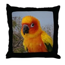 tacoIMG_2542 Throw Pillow