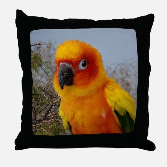 tacoIMG_2542 Throw Pillow
