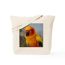 tacoIMG_2542 Tote Bag