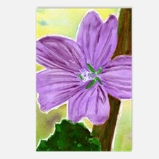 common mallow crop Postcards (Package of 8)