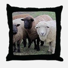3 Sheep at Wachusett Throw Pillow