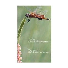Live in the Moment Card Decal