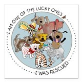 Rescue dog Square Car Magnets