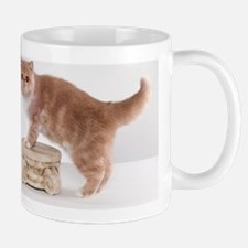 Calendar6 Mug