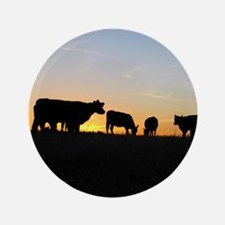 """Cows at sundown 3.5"""" Button"""