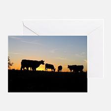 Cows at sundown Greeting Card