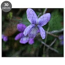Violet Puzzle