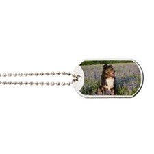 Zorro Bluebonnets-BIG Dog Tags