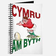 Welsh Rugby - Kicker Journal