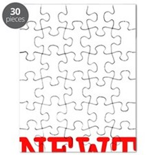 VoteNewt1Bk Puzzle