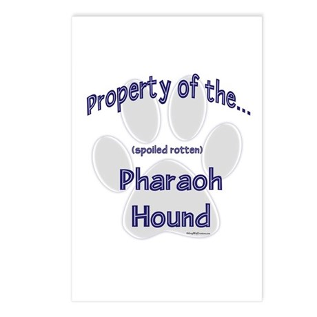 Pharaoh Hound Property Postcards (Package of 8)