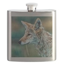 coyote Flask